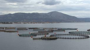 European Aquaculture Advisory Council launched