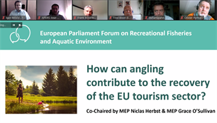 Angling tourism must become an integral part of the EU's tourism strategy