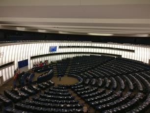 European Parliament Plenary adopts a milestone resolution on recreational fisheries