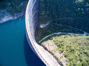 EVENT REPORT - Biodiversity and hydropower: a Green Deal for migratory fish?