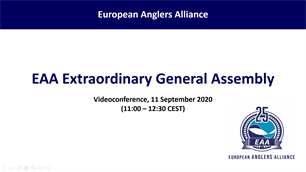 Fruitful meetings of the EAA General Assembly and Subgroups