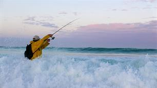 Including marine recreational fisheries in the CFP: can the EU afford not to?