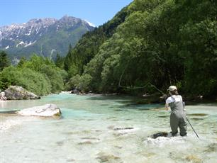 Introducing... The Fishing Association of Slovenia