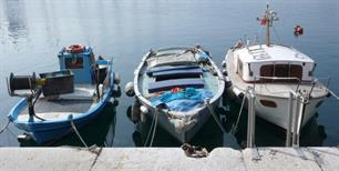 New fisheries management strategy for the Mediterranean Sea adopted