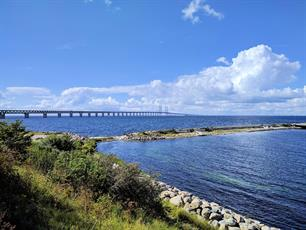 Recreational sea angling in the Öresund might be worth over €50 million euro