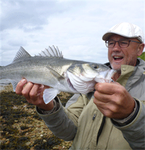 Sea bass - EAA's position on the 2021 fishing opportunities
