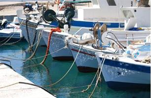 The European Commission unveils a Strategy to improve fish stocks in the Mediterranean