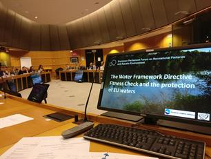 Time for EU Member States to implement the Water Framework Directive for real
